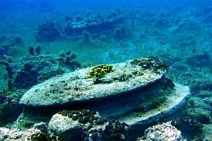 Дно ионического моря