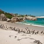 ЮАР в апреле