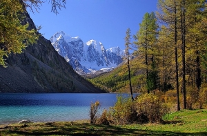 Природа Алтая